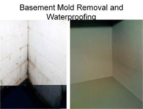 Basement Cleaning And Restoration Block Brick